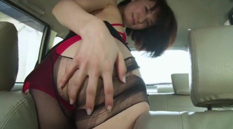 戸田れい 狭い車内でドエロい下着を見せつけてくる大人のお姉さんがエロい